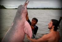 A chegada na Amazônia…