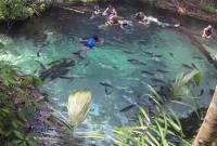 Conheça o Aquário Encantado em Nobres / Bom Jardim-MT