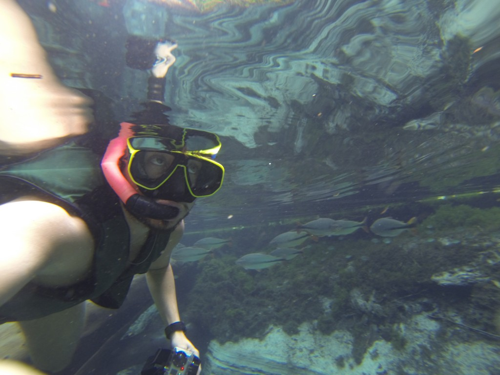 Mochileiro no aquário