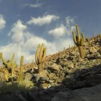 Bucket List – Deserto do Atacama