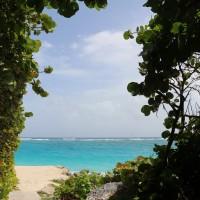 O que fazer em Barbados? Confira aqui o guia completo!