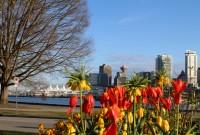 Bucket List – Vancouver & Scenic Rush