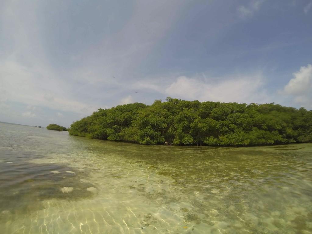 O mangue de San Andrés