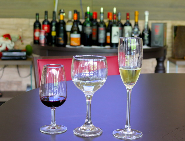 Provando os vinhos desde o começo...