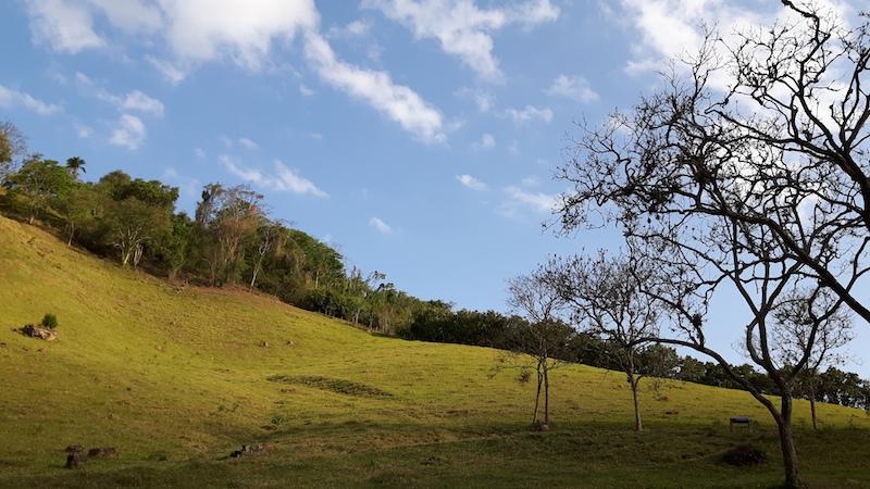 A paisagem durante o passeio de charrete é muito bonita!